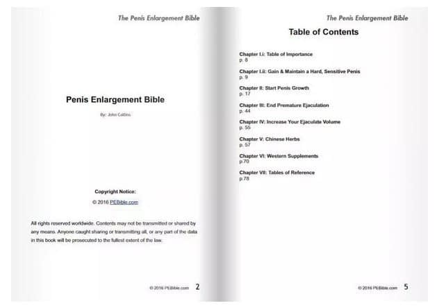 Table of Contents PE Bible