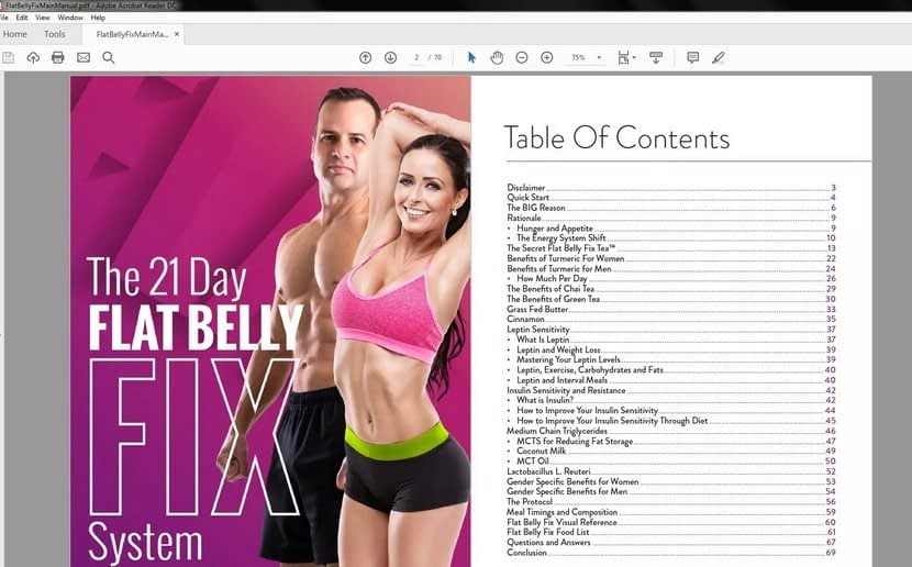 The 21 Day Flat Belly Fix Table of Content